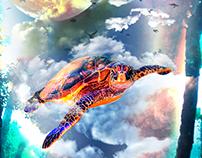 Fly Tortoise