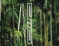 Planète bambou