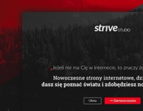 [ Strive Studio ]