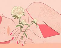 Illustrations for Secret Delivery