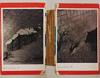 Reminiscência I e II (Livro-coisa) - 2018