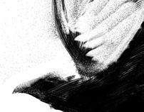 """said the raven nevermore"" Digital Drawing, Kurt Achatz"