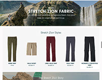 Stretch Zion Page
