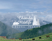 Chamba Wildlife Division - Teaser Video