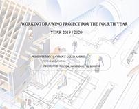 Working Darwings Project