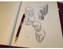 Anatomy Practice