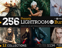 256 New Lightroom Presets Bundle by Presetrain Co.