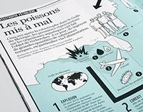 WWF Magazine infographic