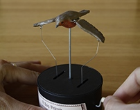 Autómatas - Pájaros