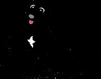 Flash Digital Media Logo Animation