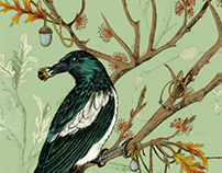 Bower Birds - Light Grey Art Gallery Exhibition
