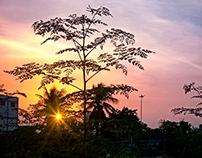 The Sun Set