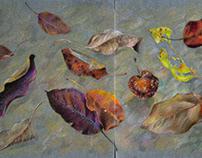 Осенний натюрморт на стеклянном столе.