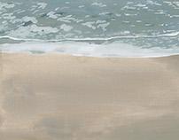 波の絵 wave pictures