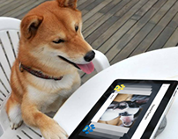Pant: Tinder for Dogs Initial Research and App Design