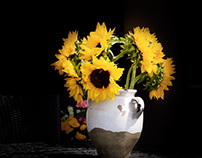 Flowers are the sunshine, food and medicine of the mind