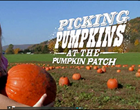 STORY LAURIE & FRIENDS: Picking Pumpkins video