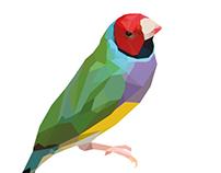 Low Poly Bird