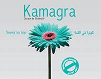 Kamagra, Dysfonction érectile