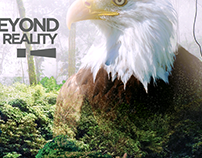 Beyond Reality 2