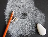 Wolf | sophierousseau.fr