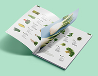 Burpee Catalog (rebrand) | Publication Design