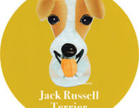 028 | Jack Russell Terrier