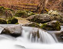 Wild & Wonderful: West Virginia