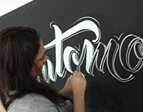 Sign Painting  AUTOMOB
