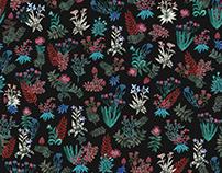 PAULINA VÅRREGN - Wildflowers. - KIOSK OF DEMOCRACY