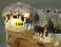 NIKON: King Croc Campaign