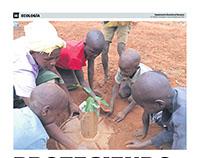 Cocoon, solución para la reforestación