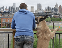Ford: National Dog Day/Video and Social Campaign