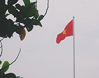 Việt Nam, 2015