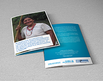 Díptico - Voluntarios de las Naciones Unidas (ONU)