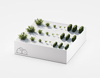 Shop: Bushes/Hedges for C4D