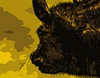 Illustration: Charging Bull