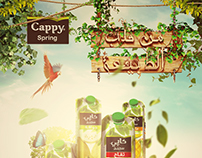 Cappy Spring | Juice from the heart of nature