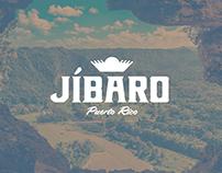 Jibaro Visual Style Guide 2016