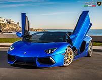 Lamborghini Aventador  - Lamborghini Newport Beach