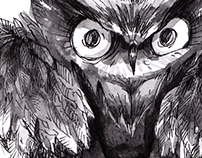 Animals_ Book Illustration Project