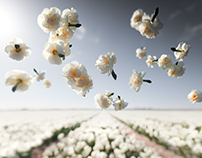 Gravity - Flower Power