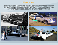 New York Airport Limousine Service