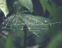 """""""Leaves"""" tipografía"""