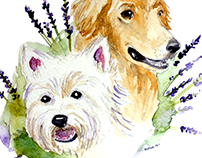 AniScentia© Herbal Canine Care Logo & Illustration