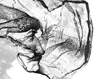 Monotype illustrations