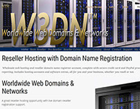 W3DN Logo & Website