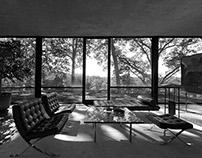Veiled Glass House