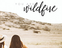 Wildfire 2017 Booklet