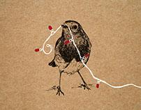 B&Q Christmas packaging illustrations